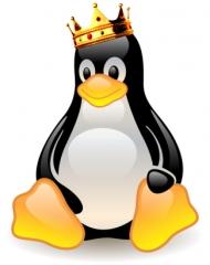 Linux znowu pokona Windows. Znowu na pewno.